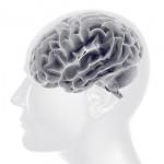 おならのにおいも心地よくなる?においがもたらす脳への影響とは