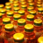 ウコンは肝臓に良い効果があるのか?ウコンの有効性・安全性について