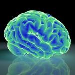 脳血栓が再発する原因は局所ホルモンに原因があった?脳梗塞を防止する薬とは